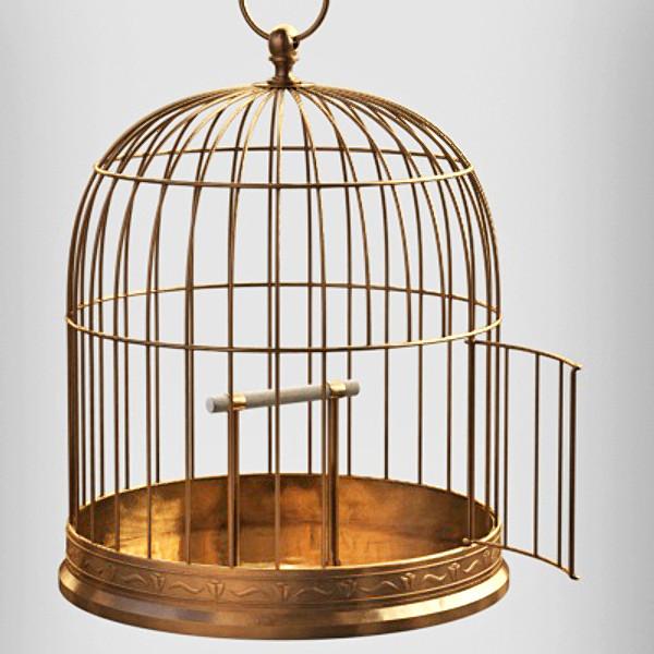 Rüyada Kuş Kafesi Görmek Ruyatabirlericom